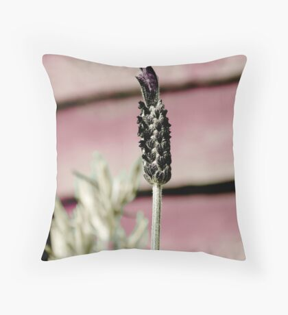 Faded Lavender Throw Pillow