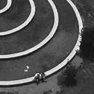 In The Circle by Danit Elgev