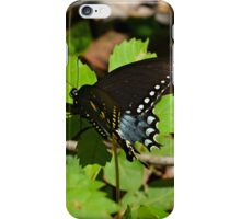 Delicate Swallowtail iPhone Case/Skin