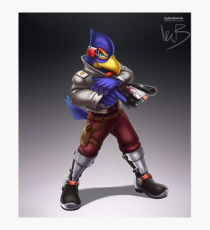 Falco Photographic Print