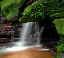 Sommersby Lower Falls by Nichole Lea