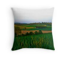 A Scenic Vally View Throw Pillow