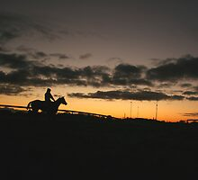 Cranbourne Trackwork by Matt Wilson