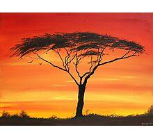 Series of Sunset Photographic Print
