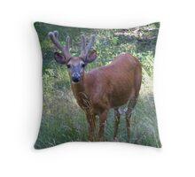 The Buck and the Prairie Grass Throw Pillow