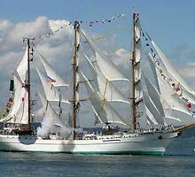 Tall Ship Cuauhtemoc by Rhonda R Clements
