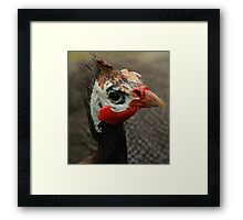 You Have to Love that Face! Framed Print