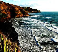 Muriwai Beach by photohunter