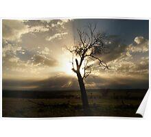 """Meraldon Dawn Rays "". Poster"
