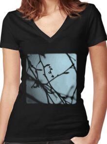 Winter Blues - TTV Women's Fitted V-Neck T-Shirt