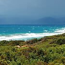 Great Ocean Road Views Pano by John  Kowalski