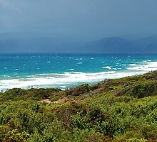Great Ocean Road Views Pano by John  Kowalski