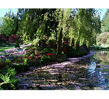 Butchart Gardens in the Spring, (please view large) Photographic Print