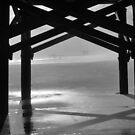 Fog Comes To The Beach B&W by ©Dawne M. Dunton