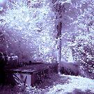 Secret Garden by Beth A