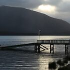 Lake Te Anau, Te Anau, New Zealand by fns720