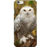 Pepsi, A Snowy Owl iPhone Case/Skin