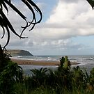 Exotic Port St Johns by kimwild
