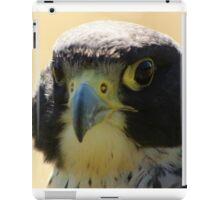 Lady Grey iPad Case/Skin
