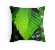 Backlit beech leaf Throw Pillow
