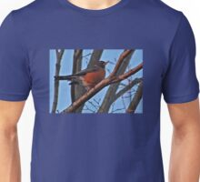 Red Robin in a Japanese Maple Unisex T-Shirt
