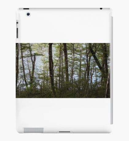 Water through the trees  iPad Case/Skin