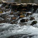 Giant springs 1 by Borror