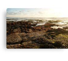 """""""Landscapes & Seascapes"""" Canvas Print"""
