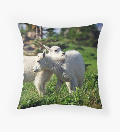 Sibling's Throw Pillow