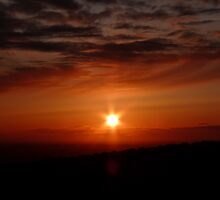 Orange Sunset by Andrea Naylor