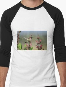 Ruby Throated Hummer Frozen With Style Men's Baseball ¾ T-Shirt