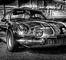 Alpine A110 by Roddy Atkinson