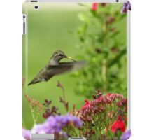Humming Above the Color iPad Case/Skin
