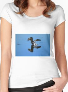 Brown Pelican Dives For Fish Women's Fitted Scoop T-Shirt