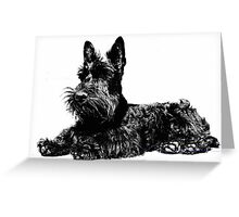 Scottish Terrier Black and White Greeting Card