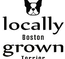 { boston terrier - locally grown } by smooshfaceutd