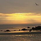 Nahant Sunrise Landscape by AntonLee