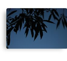 Leaves at Dusk Canvas Print