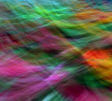 Tartan fling by Brian Downs