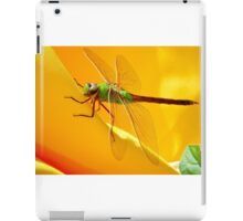 Majestic Green Darner Dragonfly iPad Case/Skin