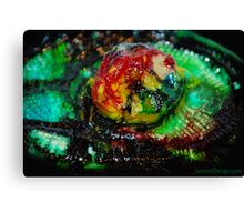 Beautifully Rotten LIFE Canvas Print