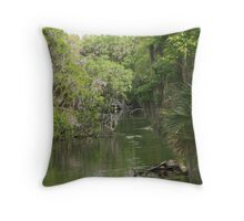 Blue Springs Park Throw Pillow