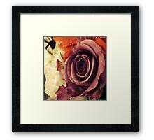 Vintage Red Rose Framed Print