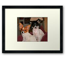 Buddy and Mia Framed Print