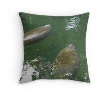 Manatees in Blue Springs Throw Pillow