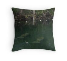 Manatees at Blue Springs Throw Pillow