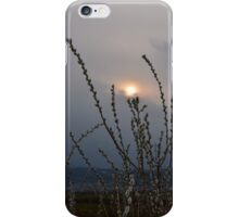 Willow buds in twilight zonw iPhone Case/Skin
