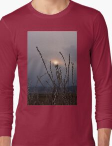 Willow buds in twilight zonw Long Sleeve T-Shirt