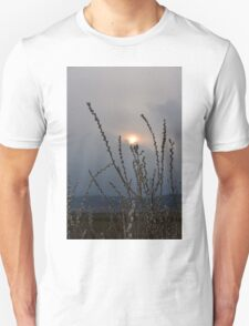 Willow buds in twilight zonw T-Shirt