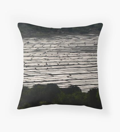 where are the rains Throw Pillow